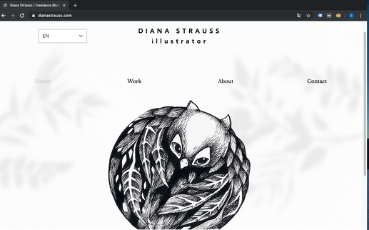 Diana Strauss Artist & Illustrator