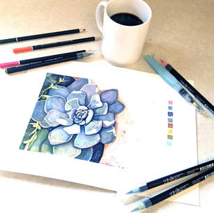 Succulent Cover Photo.jpg