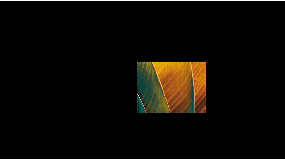 Bir yaprağın turuncu ve yeşil filtreyle aşırı yakından çekilmiş resmi.