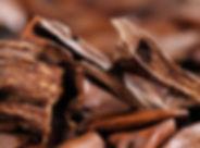 Sandalwood-Essential-Oil-1020x560.jpeg