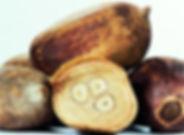 Babassu Oil Photo.jpg
