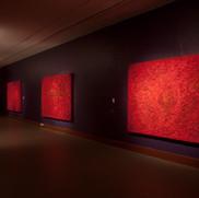"""Croatia"" Museo San Ildefonso, Mexico City, 2012"