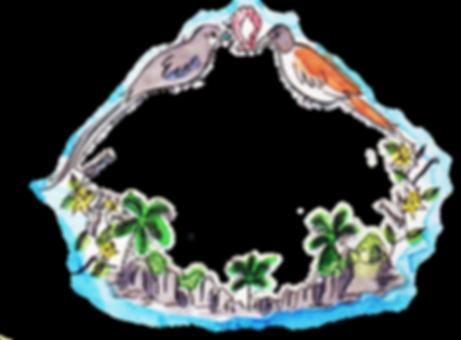 Roots Seychelles illustratd veuve paradise flycatchers male and female