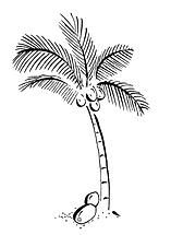 Palm tree illustration by Roots Seychelles