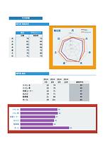 ZeTSレポートレーダーチャート