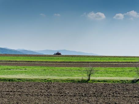 India's Farming Reforms