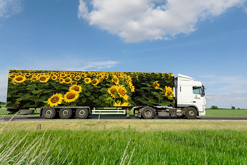 Tightship & Oil | Truck Test 1.jpg