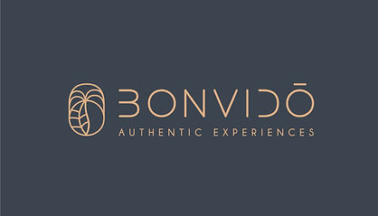 Logo_Bonvidoe%C3%8C%C2%8C_2_(FONDO_COLOR