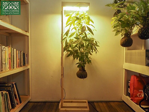 Lighted Hanging Timber Stand