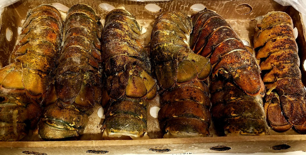 Lobster Tails(2pack)
