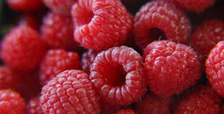 Ontario Fresh Raspberries