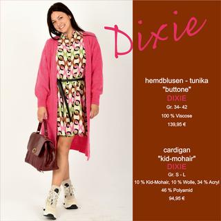 Neues von DIXIE: