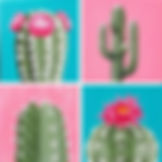 paint your cactus.jpg