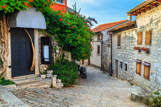 Medieval Croatian old street,with flower