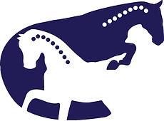 Horse Chiro Logo Navy.jpg