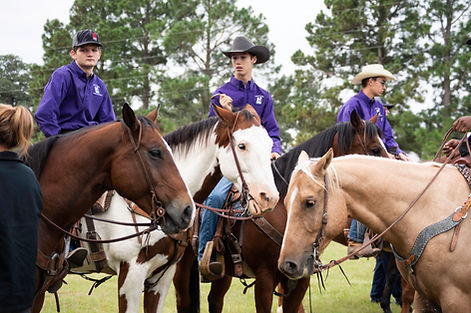 Ayla Kiepert NavaRio Miracle Farm Ranch Horse show