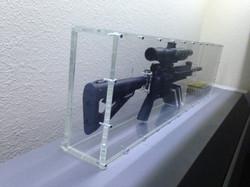 Clear Gun Cases