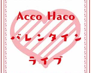 【イベント情報】2020/2/14「AccoHaco」バレンタインライブ開催!