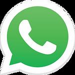 whatsApp do takayama