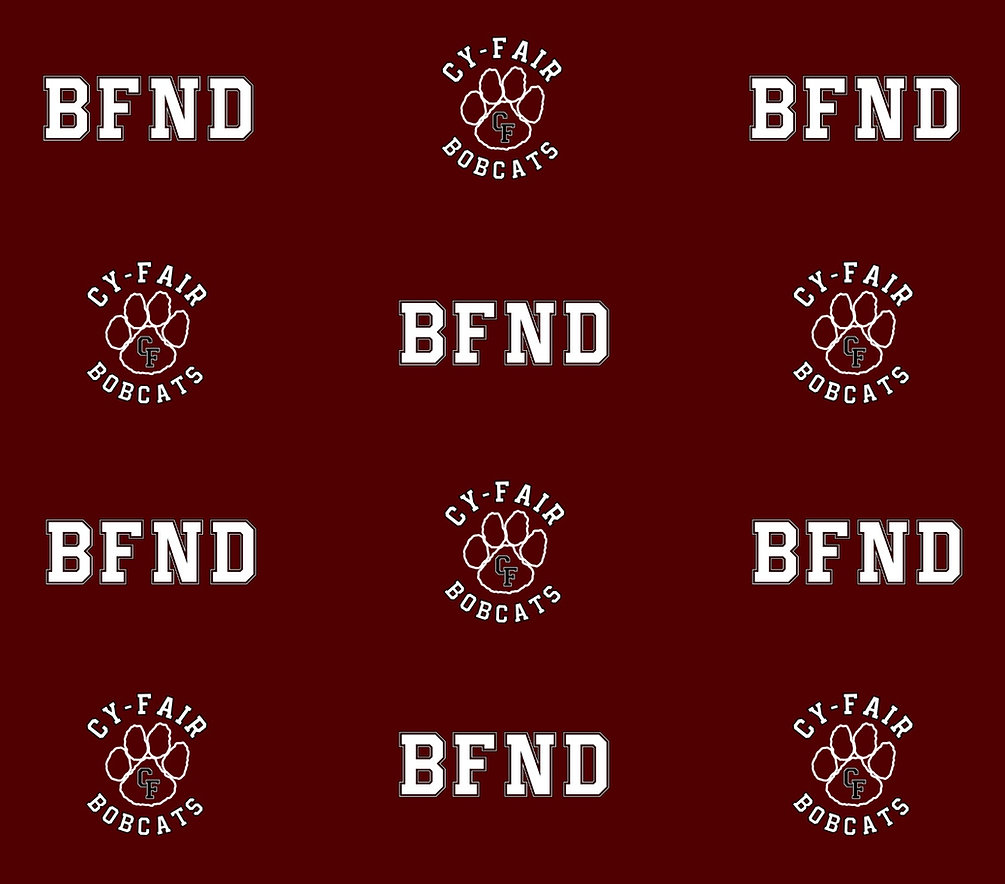 BFND Backdrop.jpg