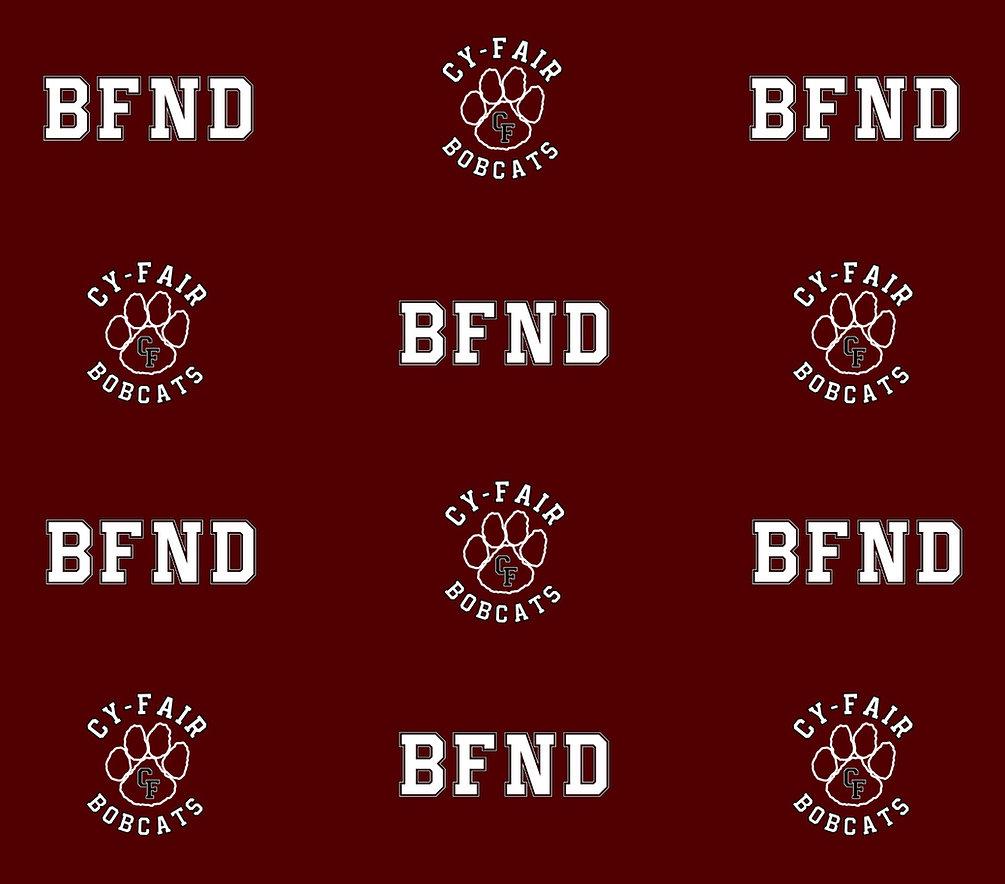 BFND Backdrop.jpg
