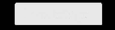 Logo Lionbridge-01.png