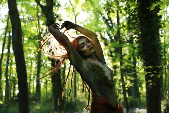 Woodland Dancer