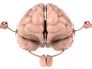Benefícios de um treinamento de Mindfulness de 8 semanas