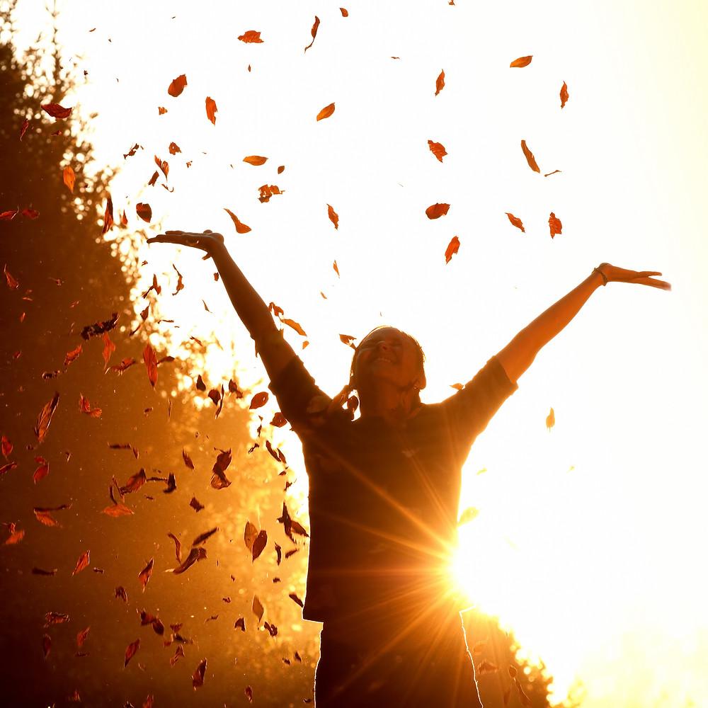 florescimento e psicologia positiva