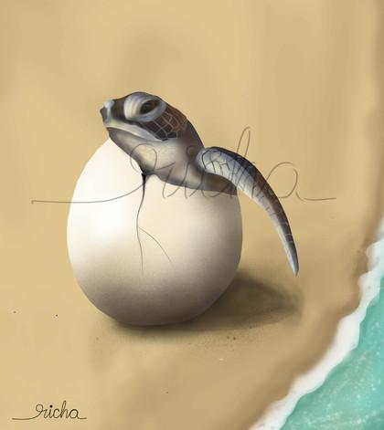 egg hatching with watermark.JPG