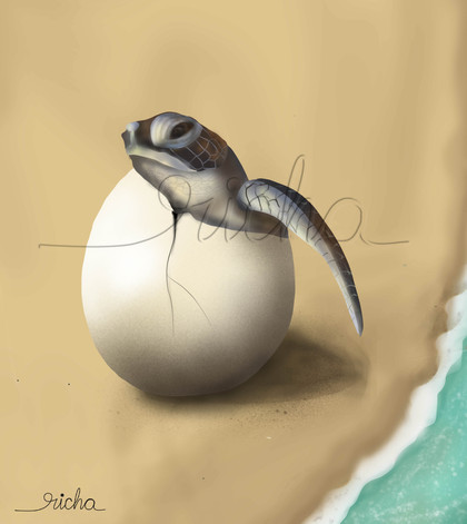 egg hatching with watermark.JPG
