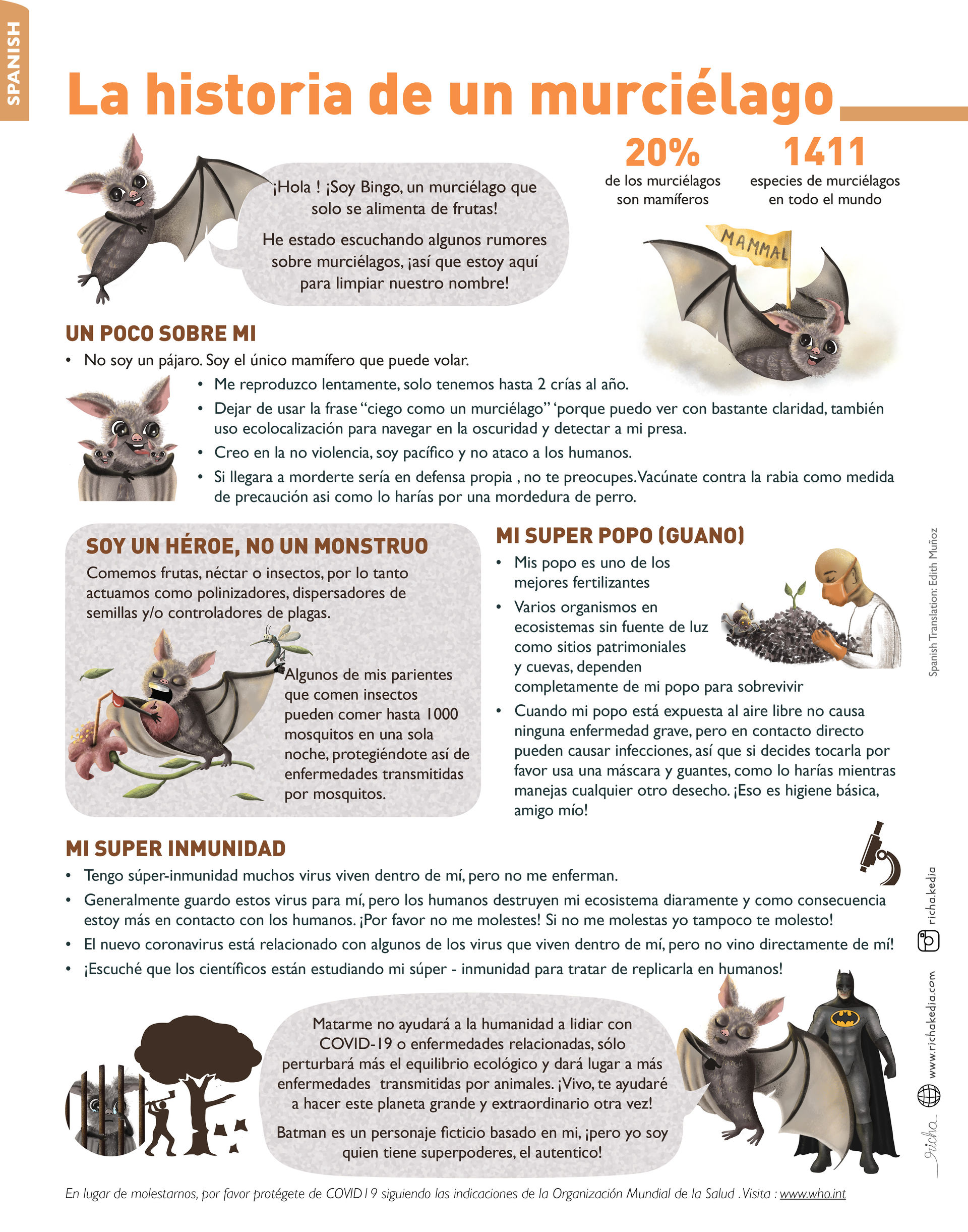Bat Infographic spanish.jpg