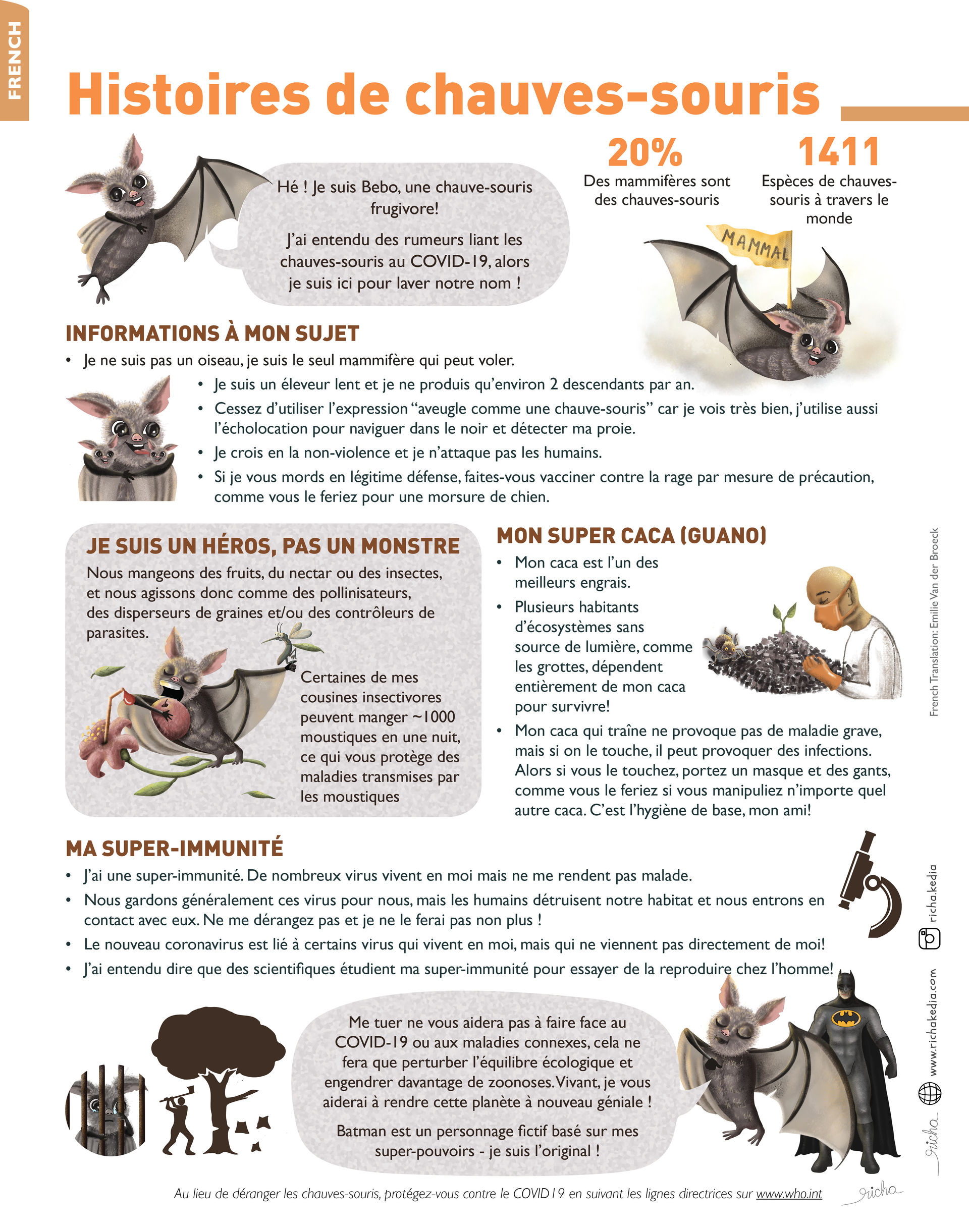 Bat Infographic french.jpg