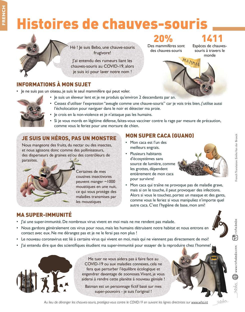 Bat Infographic french.jpg