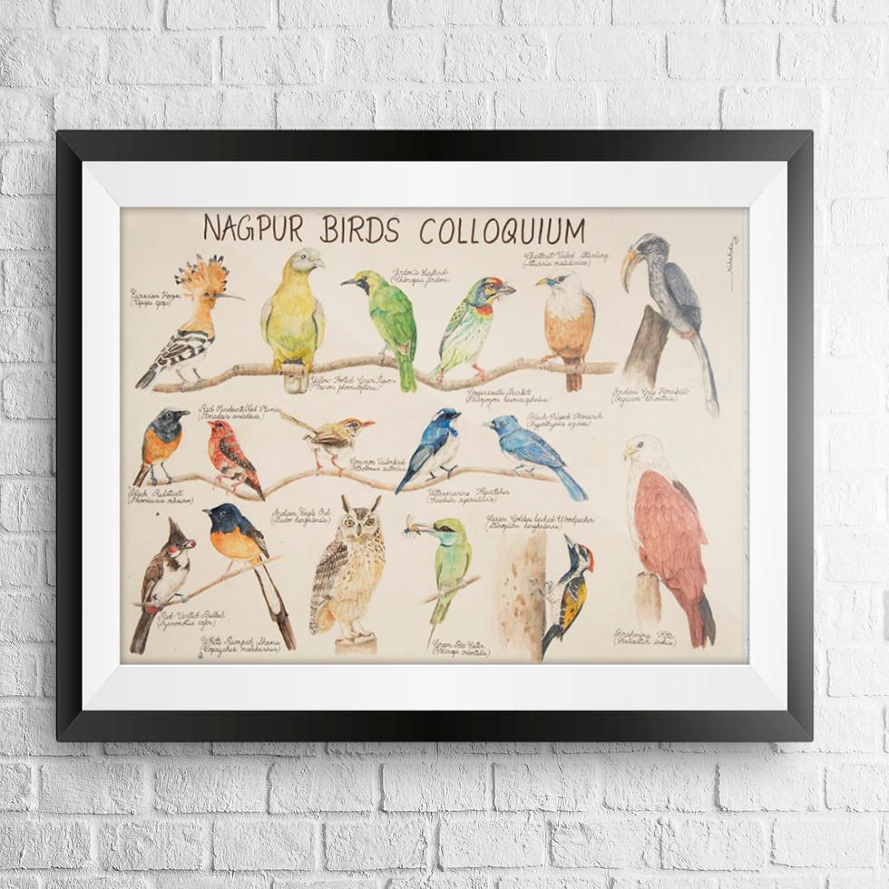 birds chart.jpg
