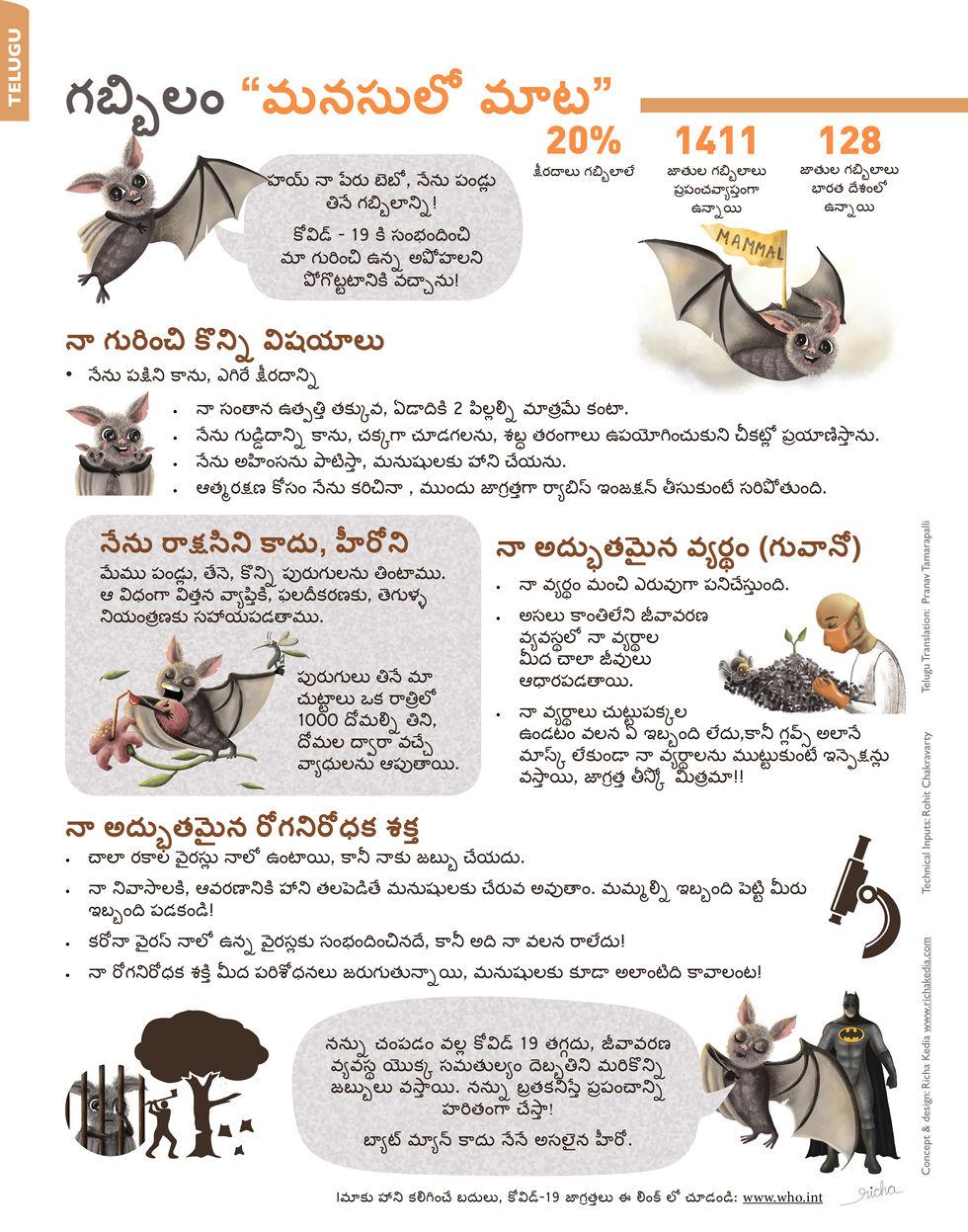 Bat Infographic Telugu.jpg