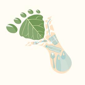Conservation Illustrations