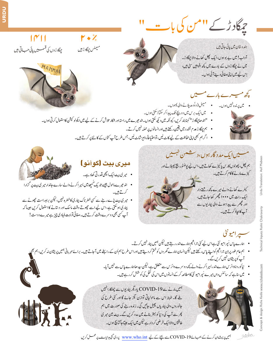 bat infographic urdu.jpeg