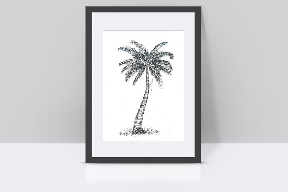coconut tree mockup.jpg