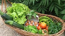 cesta ecológica