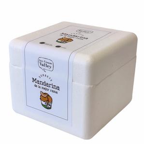 Sorbete sabor Mandarina 500ml.