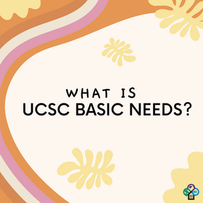 What is UCSC Basic Needs?
