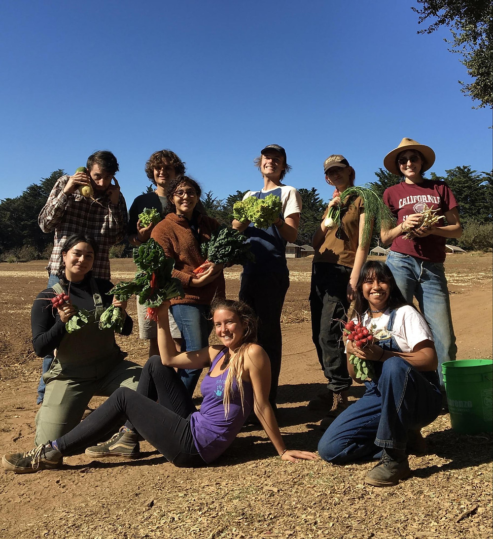 Image of UCSC students smiling working on the campus farm run by CASFS.