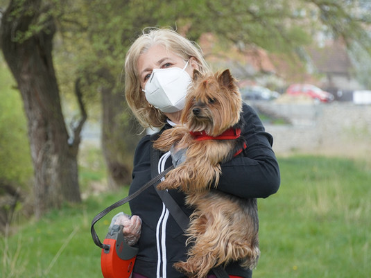 Le port du masque perturbe-t-il nos chers animaux?