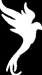 logo Lorena Cadarso blanc.png