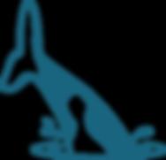 ORCA ergonomie Facteurs Humains UX Design Montpellier