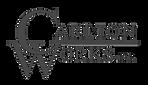 CW-Logo-2018%252520(White%252520On%25252