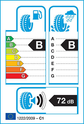EU Tyre Label Example