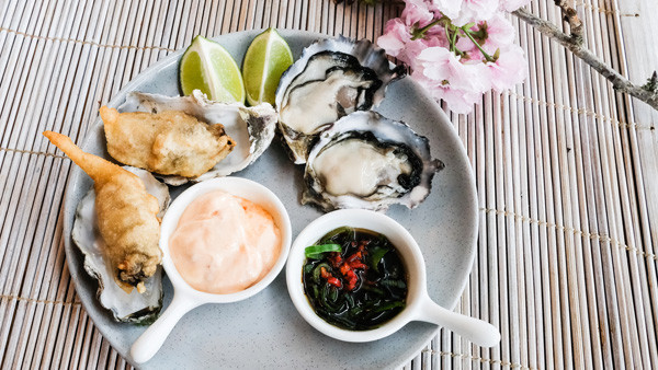 Oysters-clear.jpg