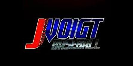 Jack Voigt Baseball Strobe Training Glasses Goggles